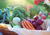 Les bienfaits de l'alimentation bio
